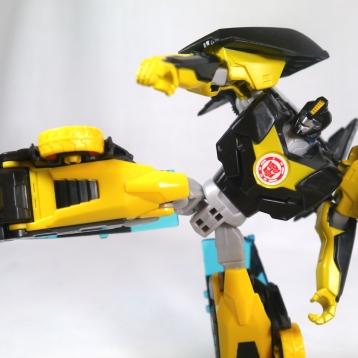 P1130431